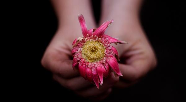 fleur-fanee